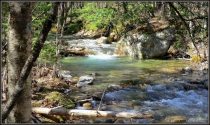 Return to Razor Brook (Presidential Range Dry River Wilderness)  | 2013-05-04