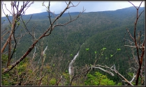 Mt. Willards Less-Visited East Side  | 2013-05-11