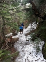 Hike #9 - Mt. Moriah - 4049 (12/48)  | 2013-05-19